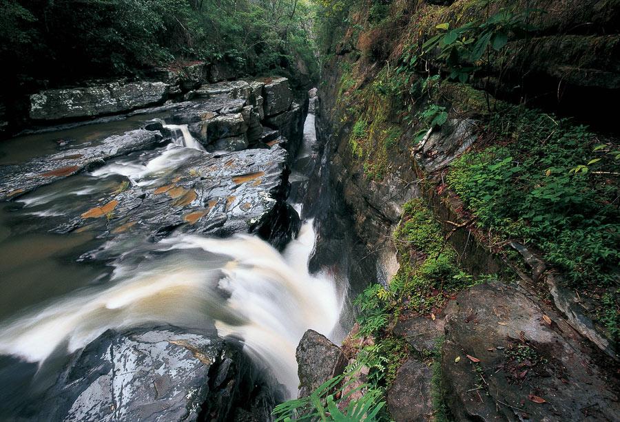Córrego Raizama - Chapada dos Veadeiros
